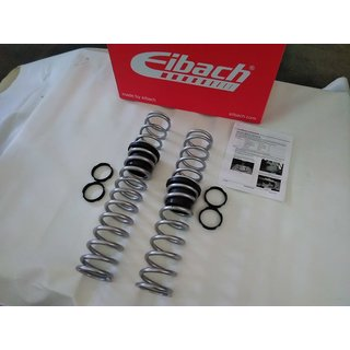 Eibach Performance Spring System, Stage 3